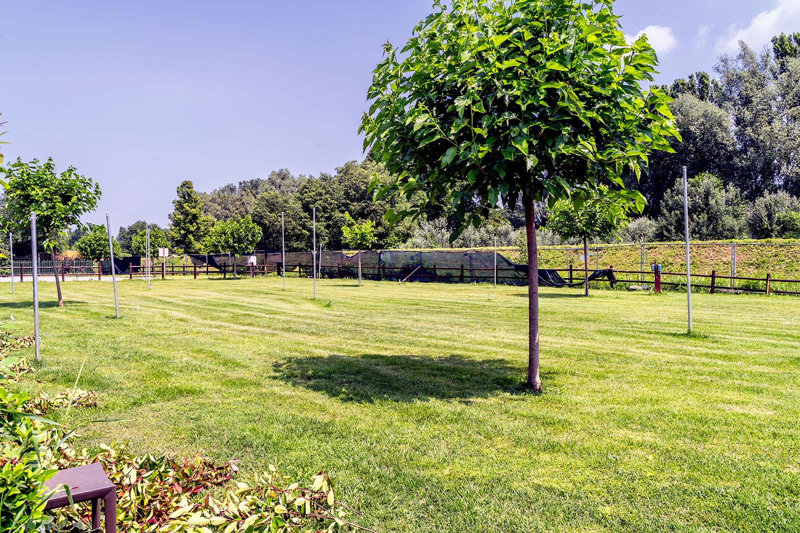 Area Tende