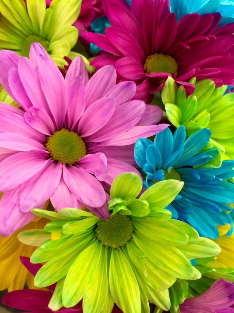Carnevale dei fiori