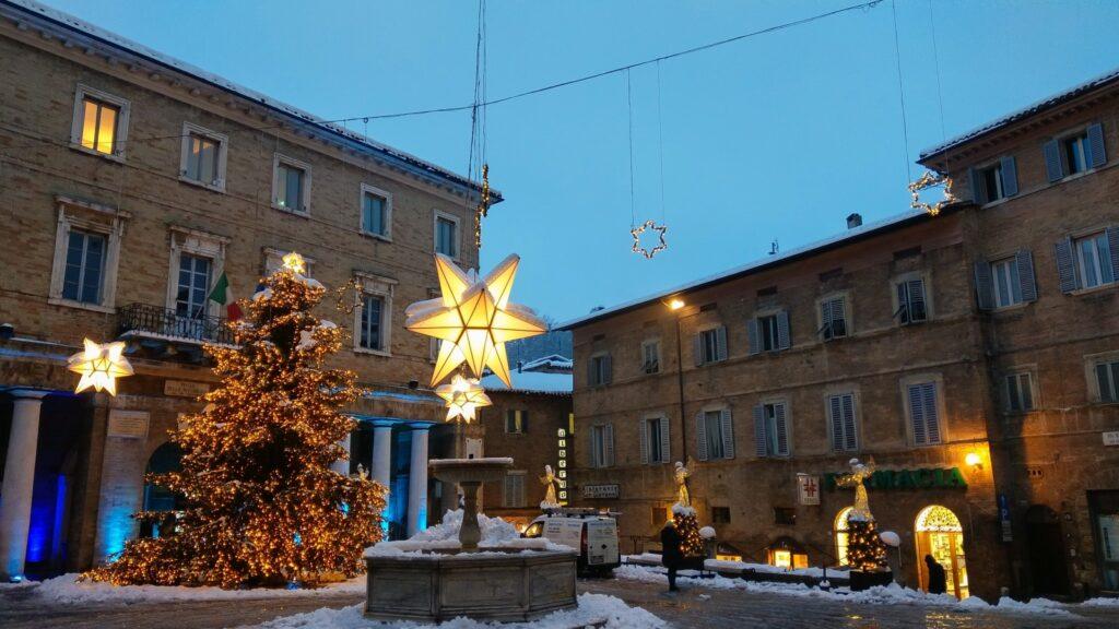 Stelle ducali a Natale