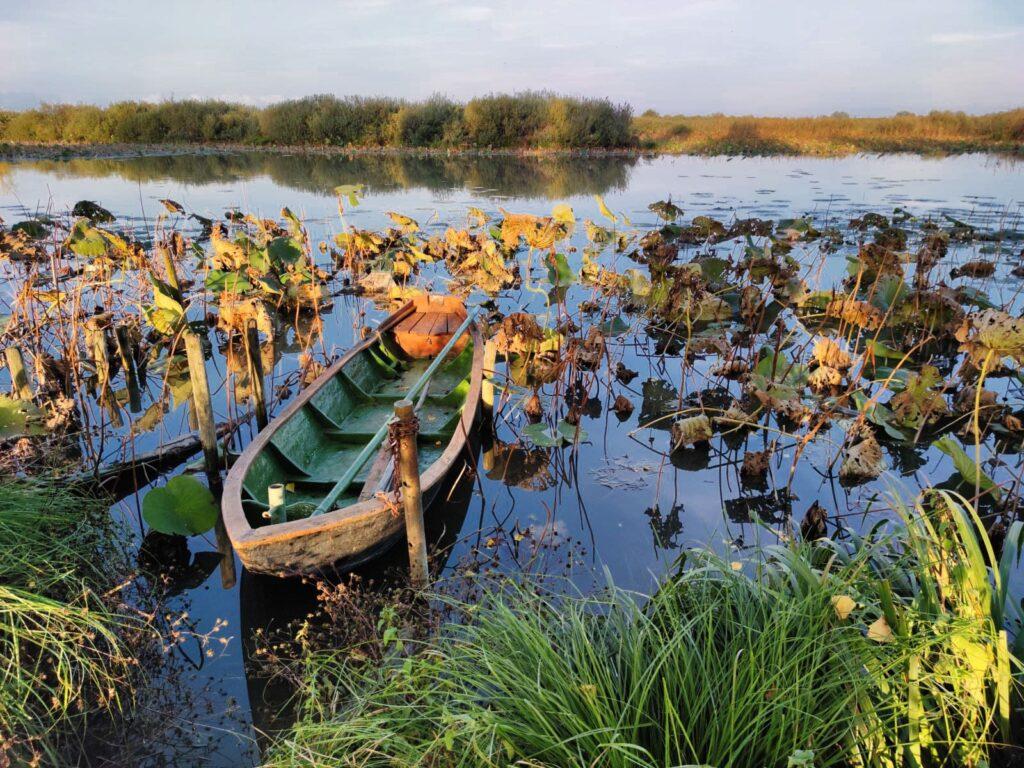 lago Grazie