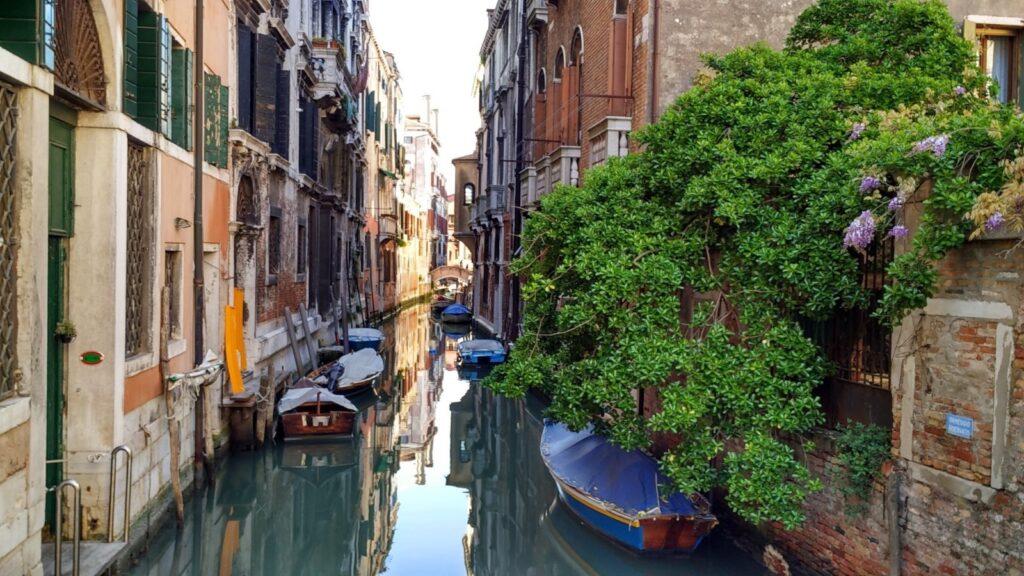 verde a venezia